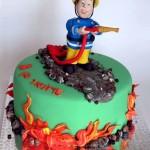סמי הכבאי עוגה מעוצבת