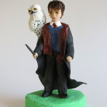 Harry Potter fondant topper